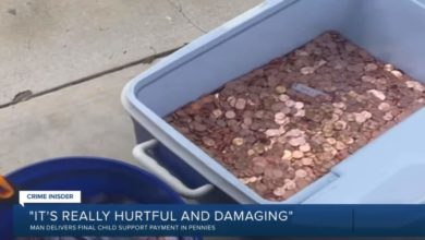 Avery Sanford donates father's 80,000 pennies in child support to domestic abuse center